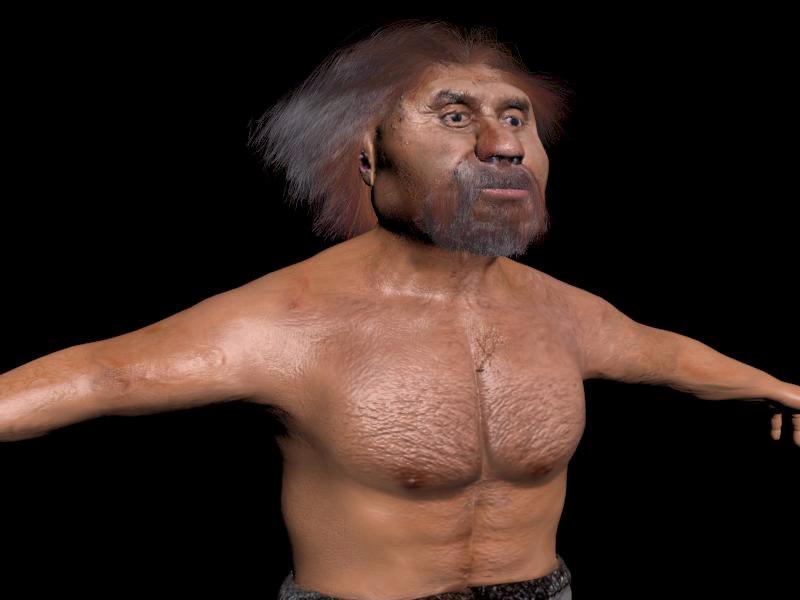 3d neanderthal man model