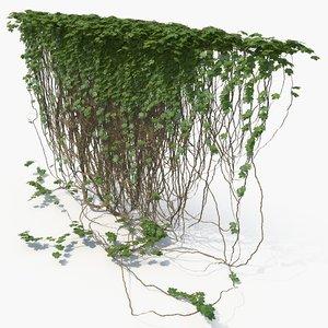 3d model realistic ivy wall