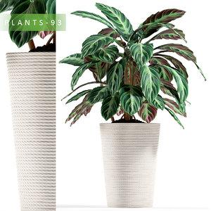 3d plant 93 model