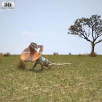 lizard frill-necked 3d c4d