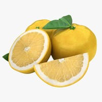 3d model realistic grapefruit yellow