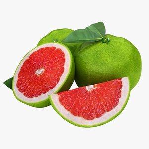 realistic grapefruit green 2 3d model