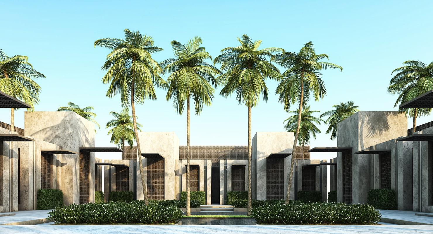 max coconut palm