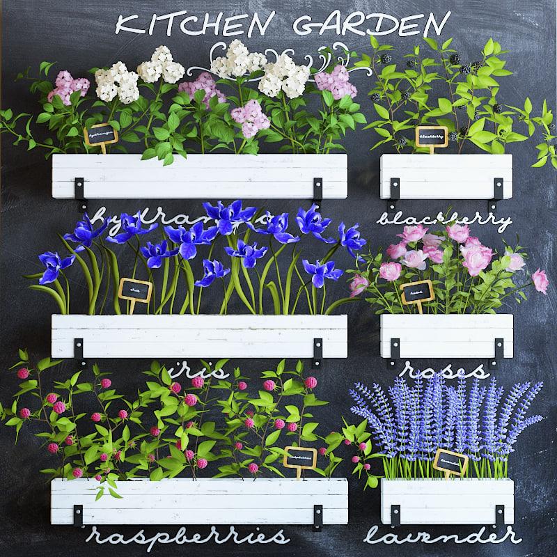 Kitchen Garden Model: 3d Model Of Kitchen Garden