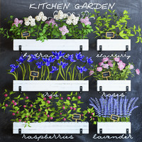 3d model of kitchen garden