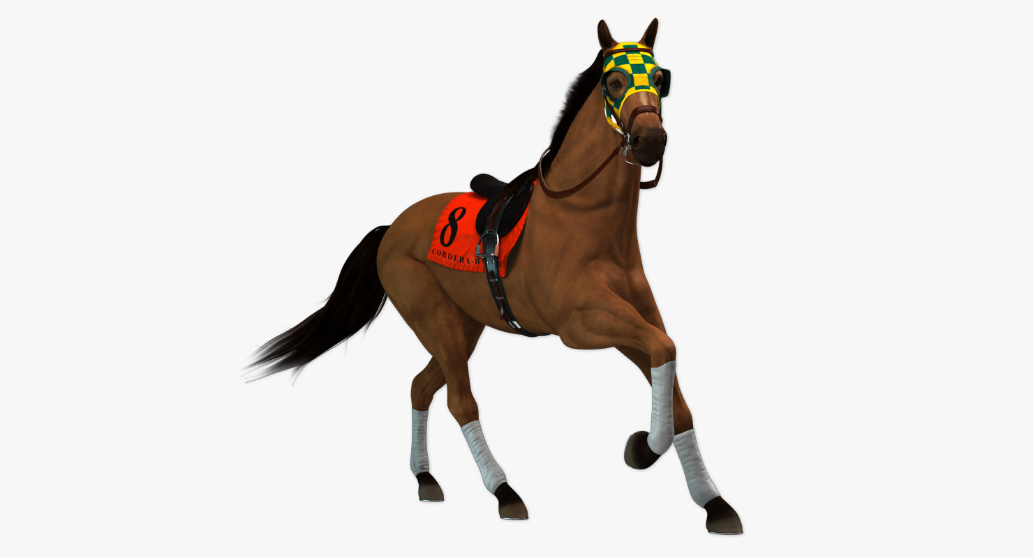 horse animations 3d max