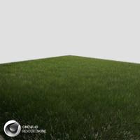 Dynamic Grass(1)