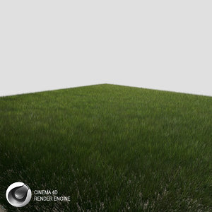 3d grass dynamic