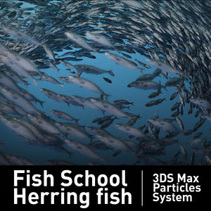 fish school particles 3d model