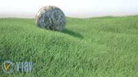 Realistic Grass(1)