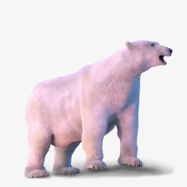 3d max rigged polar bear