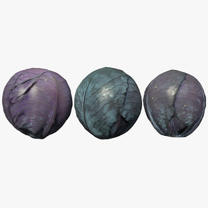 3D red cabbage scan
