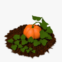 3d pumpkins plants