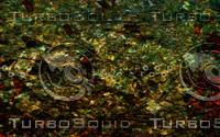 Wallpaper 091