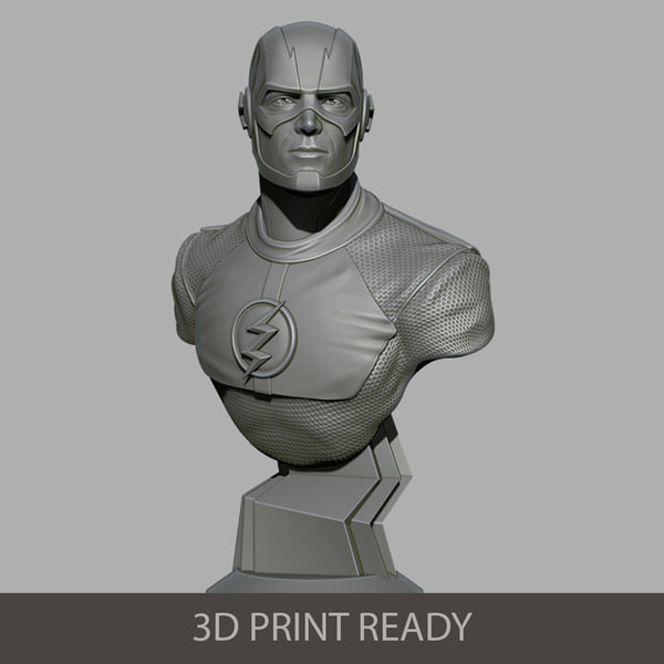 3D flash bust model