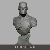 3D flash bust model