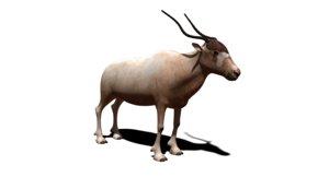 antelope 3D