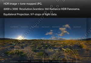 SUNRISE OVER ANZA-BORREGO DESERT SUPER BLOOM #1, 360 PANORAMA #559