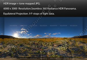 SUNRISE OVER ANZA-BORREGO DESERT SUPER BLOOM #2, 360 PANORAMA #561