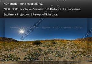 MORNING AT ANZA-BORREGO DESERT SUPER BLOOM #3, 360 PANORAMA #563