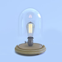 Bulb in a glass cloche