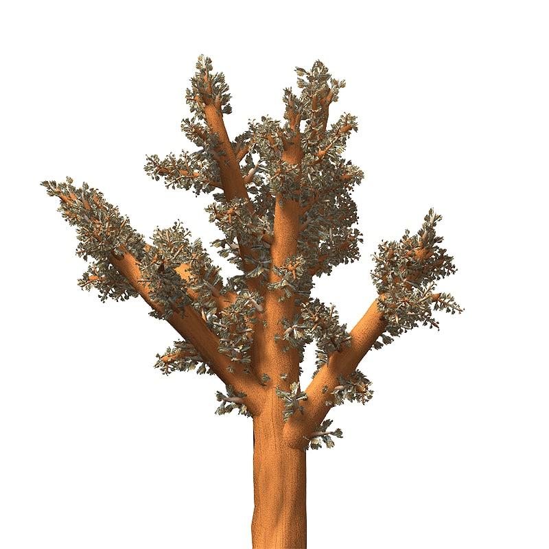 3D carnation coral
