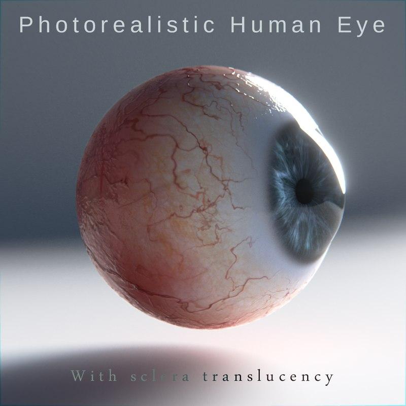 3d model of human eye