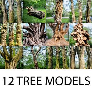 3d model 12 tree