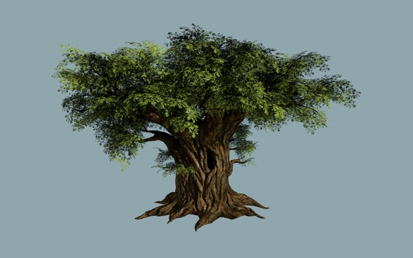 oak foliage branches 3D
