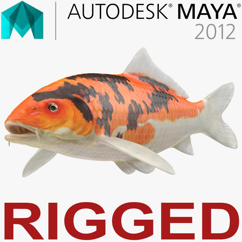 3D koi fish rigged