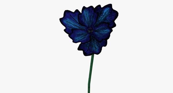 poppy blue 3ds