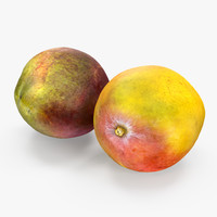 mango fruits set 3D model