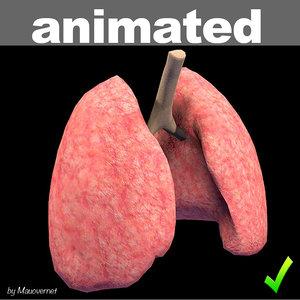 lung mat 3d model