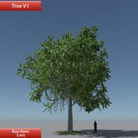 Tree Oak V1