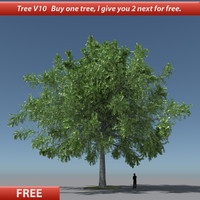 free max mode tree oak v10