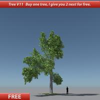free tree oak v11 3d model