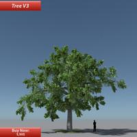Tree Oak V3