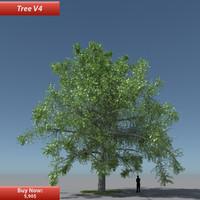 Tree Oak V4