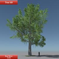 Tree Oak V8