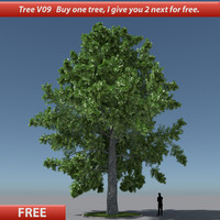 free tree oak v9 3d model