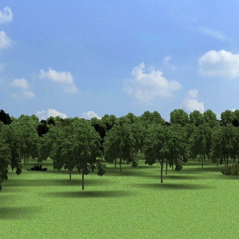 3d landscape environment forest model
