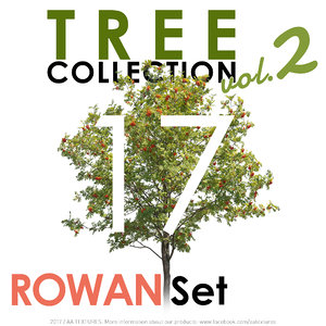 Tree Collection vol. 2 - ROWAN Set