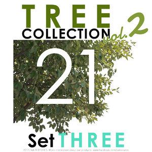 21 Tree Collection vol. 2 - Set THREE