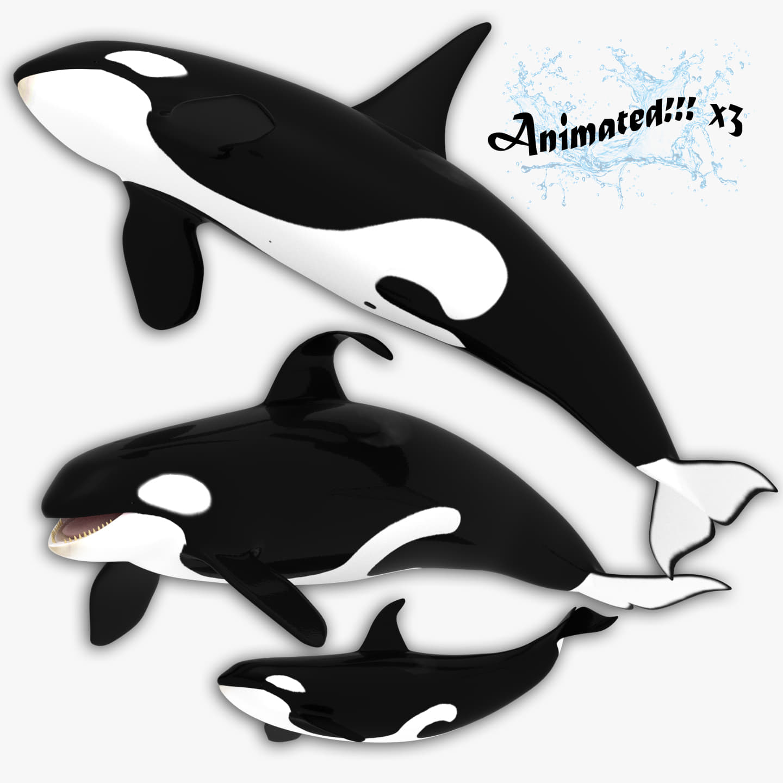 3d killer whales