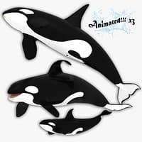 3d model killer whales