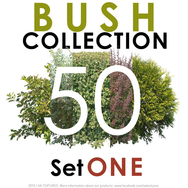 50 Bush Collection - Set ONE