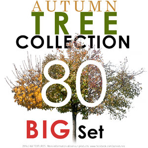 80 Autumn Tree Collection - BIG Set