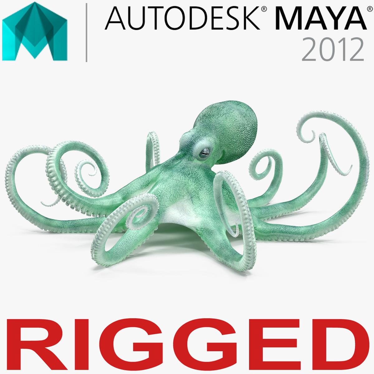 3D blue octopus rigged model