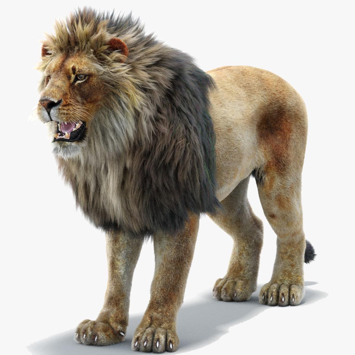 lion 2 fur 3ds