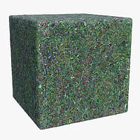 Grass (80) - Photogrammetry based Texture